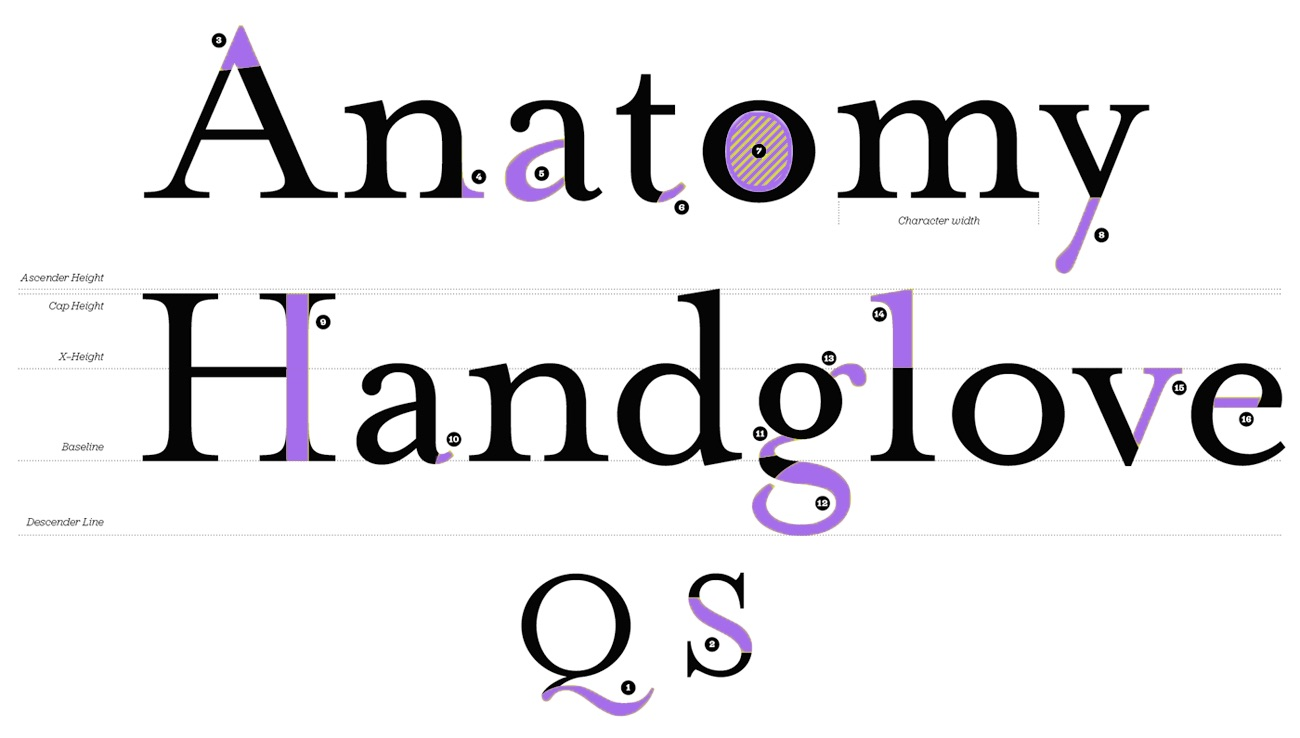 Labels (Letter Anatomy) - Talk - Typography.Guru