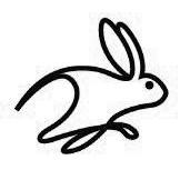 rabbit.png.b5c68e51935b0b3439b0f2f1f1f4d308.png