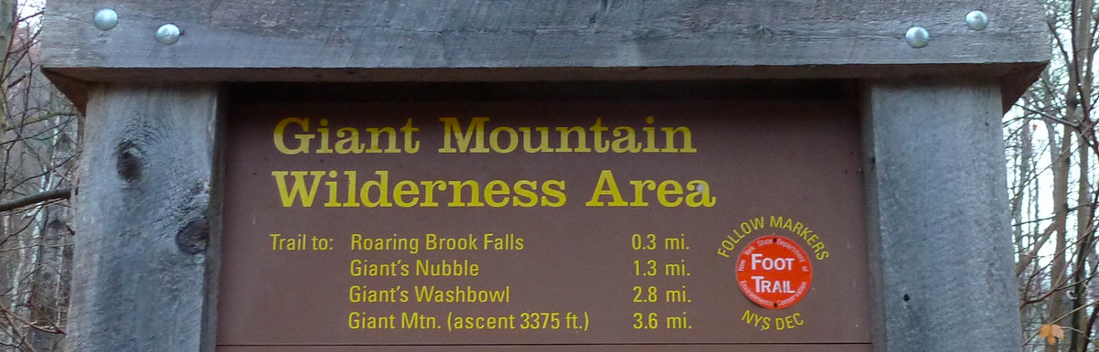 gian mtn wilderness area.png