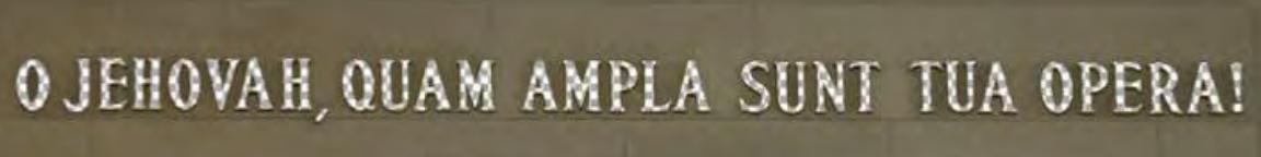 Sample.png