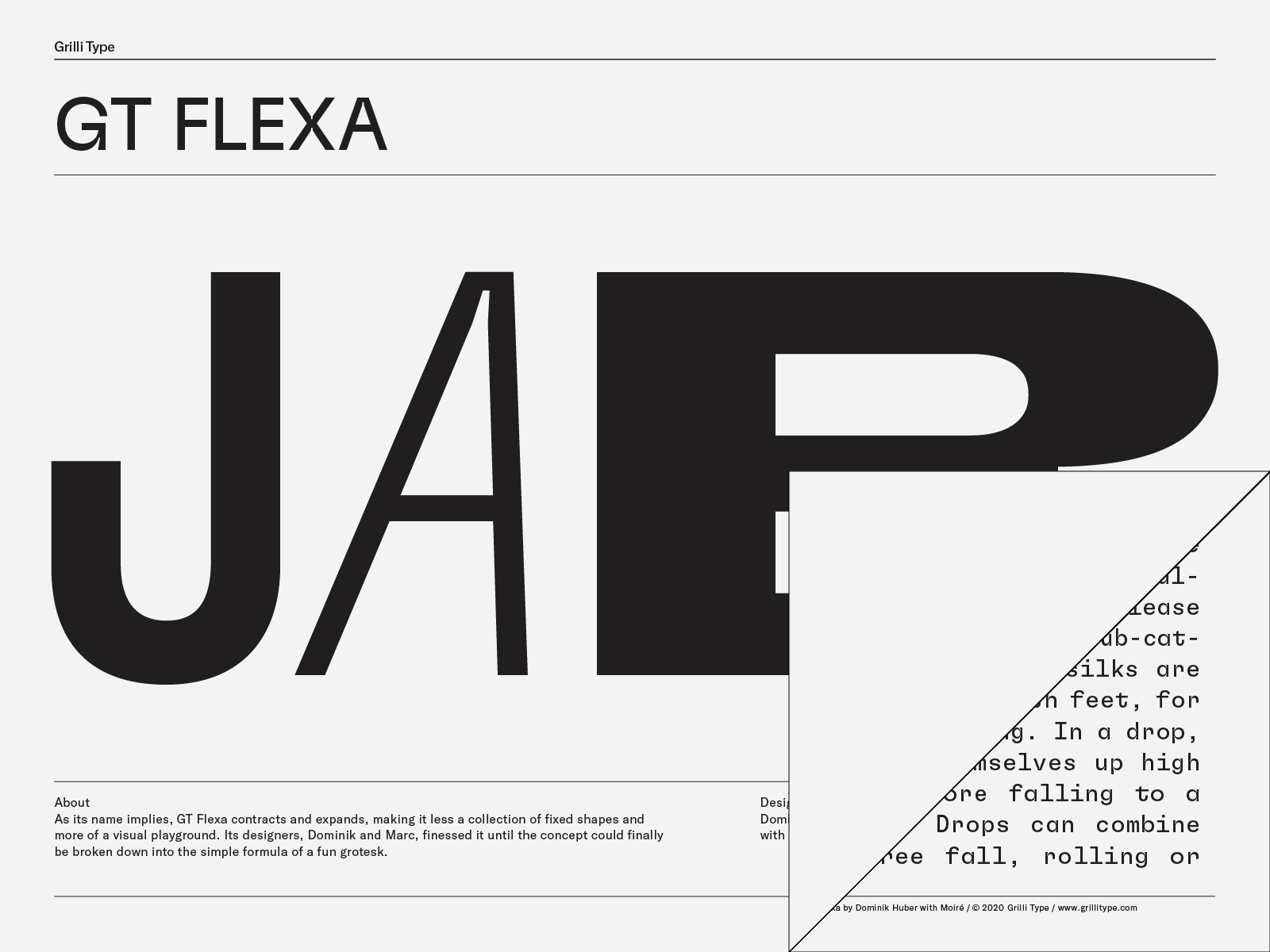 GT Flexa by Grillitype