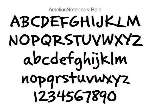 AmeliasNotebook.jpg